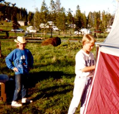 1994 Yellowstone 1